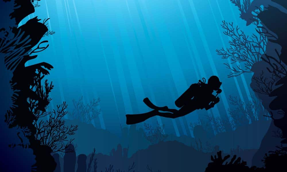 Deep Diving Google Ads Optimization
